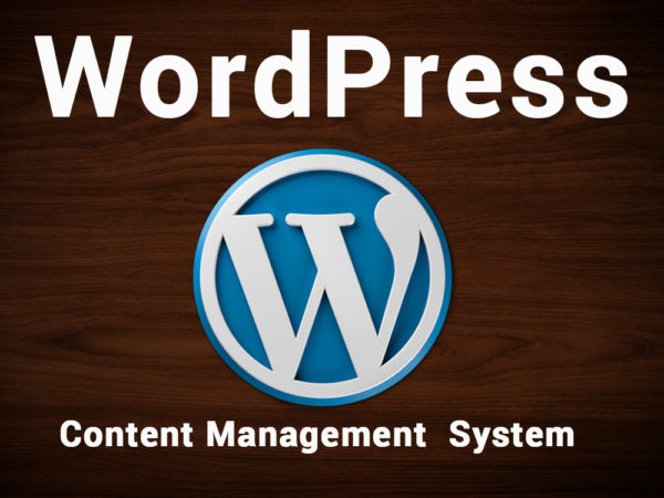 WordPress Content Management System – Flotitweb